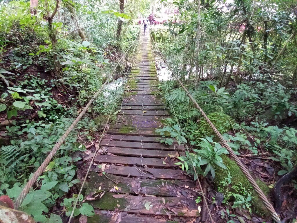 Puente parque Montecristo