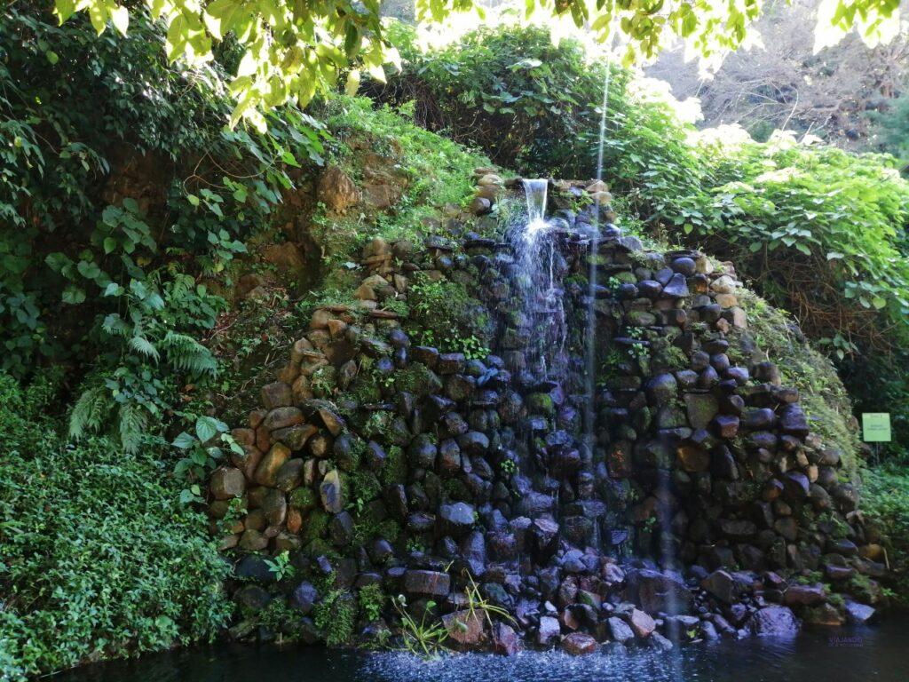Fuente en jardin botanico